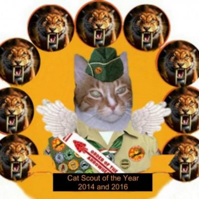 Group logo of Troop: Worldwide Wildcats