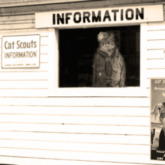 Group logo of Cat Scouts Information Booth